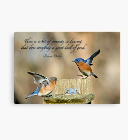 Dancing Bluebirds Canvas Print