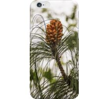 Becoming a Pine Cone! iPhone Case/Skin