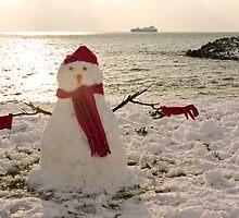 Snowman by Karen Millard
