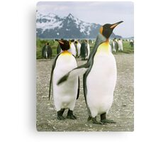 Pointing Penguin Metal Print