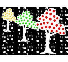 Happy Orchard Photographic Print