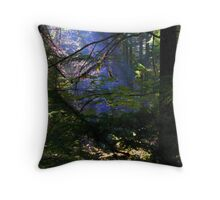The Light Beckons Me On Throw Pillow