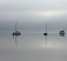 Misty Morning - Tamar River, Blackwall, Tasmania by Ruth Durose