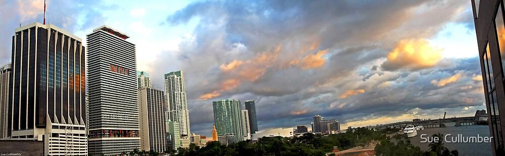 Skyline Panorama by Sue  Cullumber