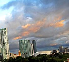 Skyline Panorama by Sue  Cullumber