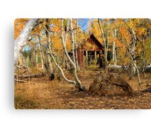 Old Cabin In The Aspens Canvas Print