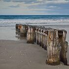 South Beach groyne 2 by Jan Pudney
