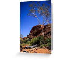 Cycads at Kings Canyon Greeting Card