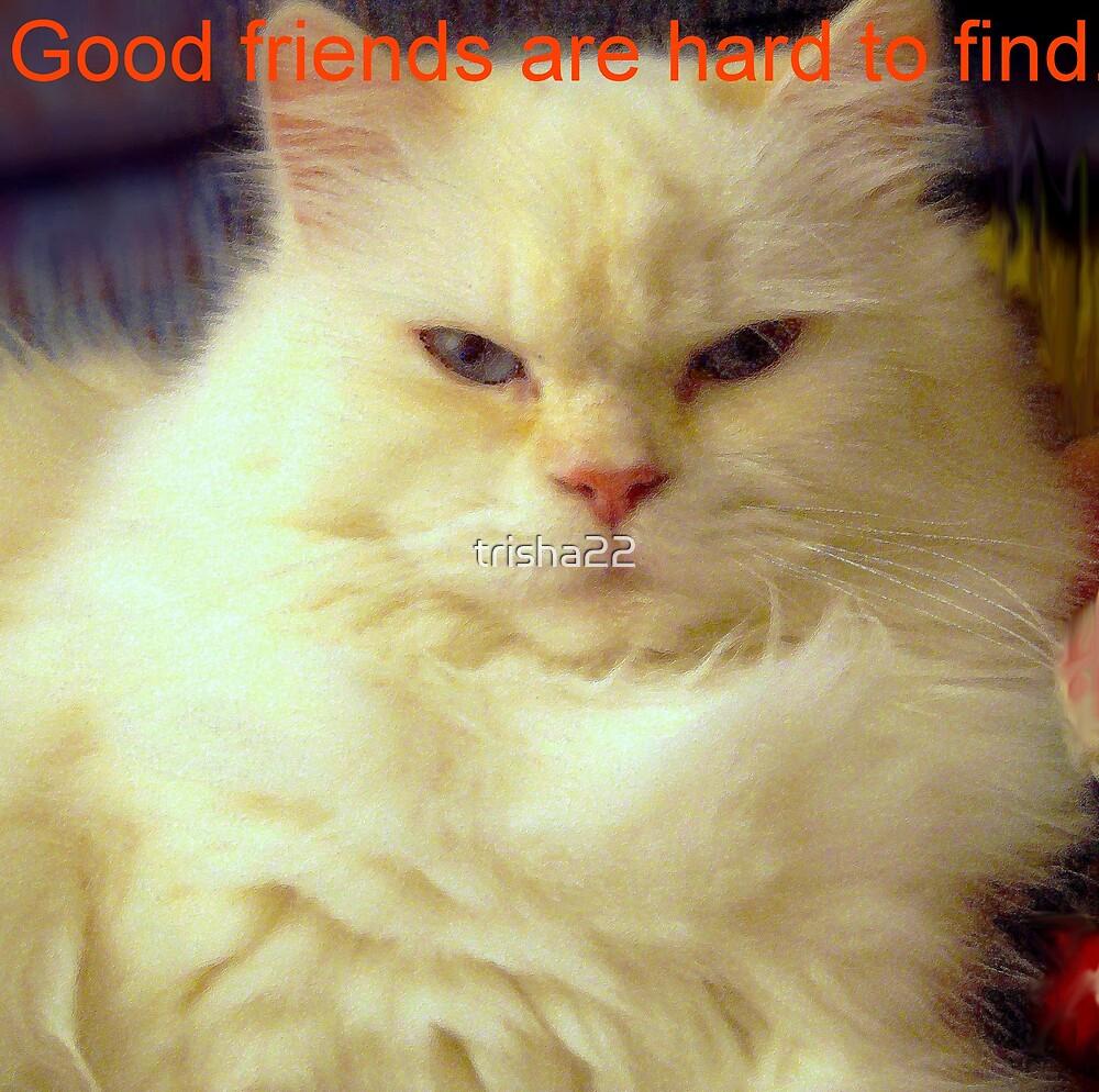 FRIENDS by trisha22