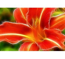 Fractal Day Lillie Photographic Print