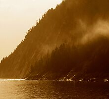 On The Saguenay by Lee Donavon Hardy