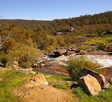 Landscape of John Forrest National Park by georgieboy98