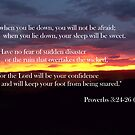 Proverbs 3:24-26 by starbuggirl