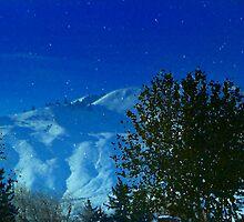 Washington Snow by Cricket Jones