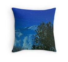 Washington Snow Throw Pillow