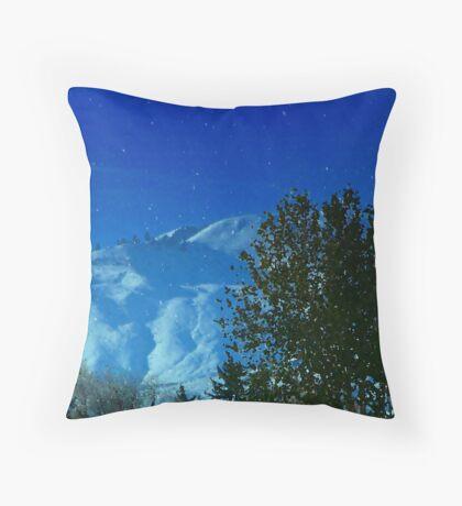 Washington Snow Throw Pillow