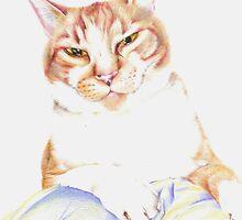 Rufus by Lyrebird