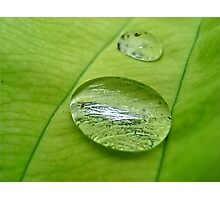 Rolling Dew Photographic Print