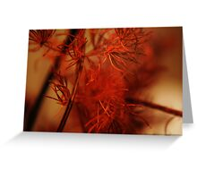 Red Colors Greeting Card