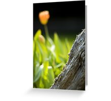 Beauty and the Bark Greeting Card
