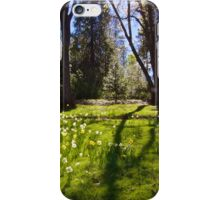 Shadows of Spring iPhone Case/Skin