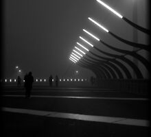 Lights in the Fog by Andrew Wilson