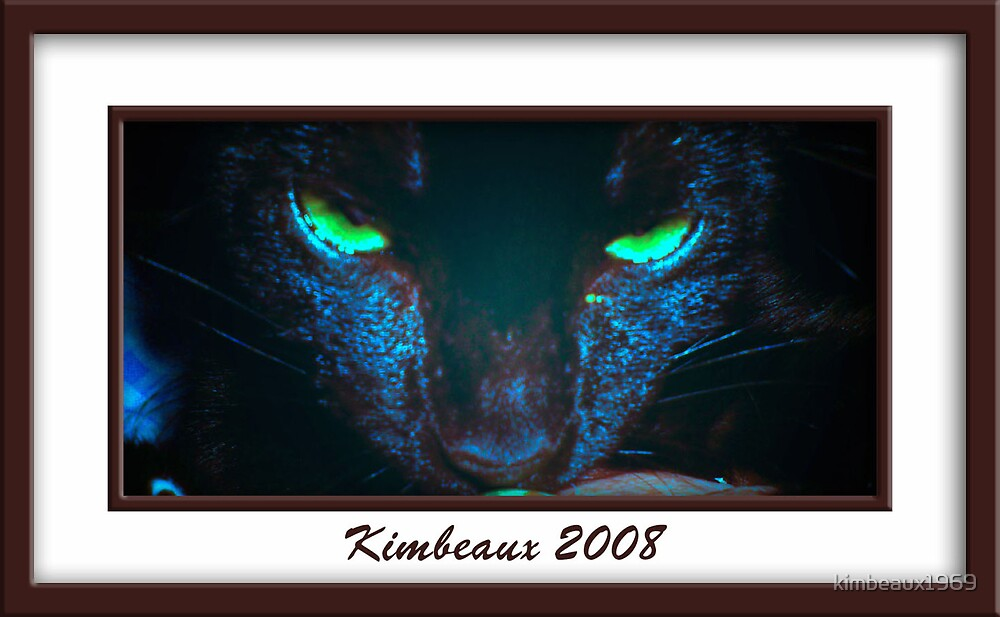 Blackie's Eyes by kimbeaux1969