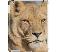 31915 lioness iPad Case/Skin