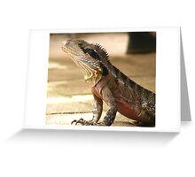 Backyard Water Dragon Greeting Card