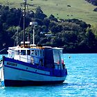Fishing Trawer Akaroa, New Zealand by Sandra  Sengstock-Miller
