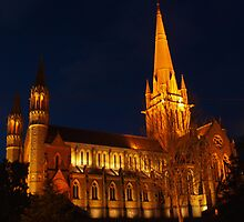 The Sacred Heart Cathedral, Bendigo at night by Clive
