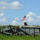 American Pride on the Farm by Barberelli