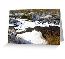 Brandsdale Beck - Yorkshire Dales. Greeting Card