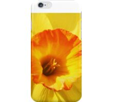 Daffodils for you iPhone Case/Skin