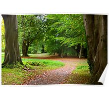 The Leafy Path Poster