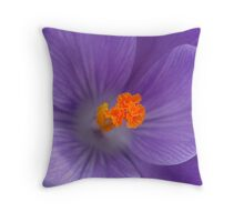 Brighter tomorrow Throw Pillow