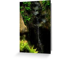 Water Stream of Sequoia Greeting Card