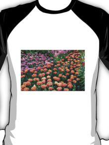 Pink and Orange Tulips - Keukenhof Gardens, Netherlands T-Shirt