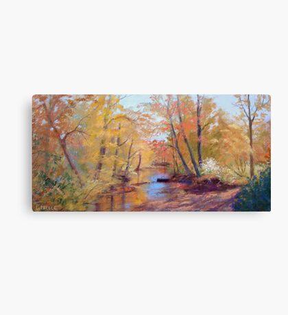 Brush Creek Canvas Print