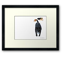 Dogs in Snow Framed Print