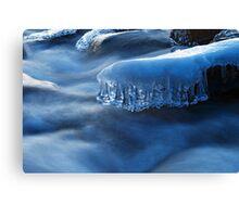 winter..  ice Canvas Print