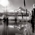 Mt Hood Infrared Panoramic by Bill Lane