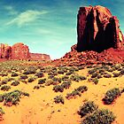 Monument Valley, Utah by Bill Lane