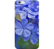 Summer garden blues iPhone Case/Skin