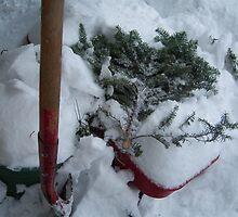Snow Spoke to the Wagon by LeaLoo
