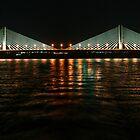 Aswan Bridge by Roddy Atkinson