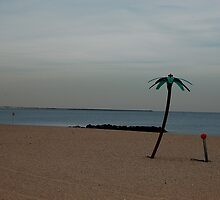 Coney Island No.13 by maxwell78