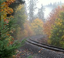 Railroad tracks in an Autumn mist by scenebyawoman