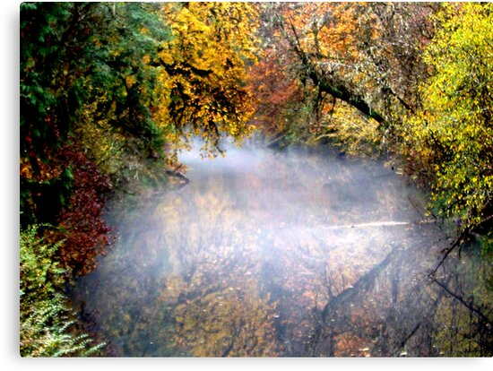 Autumn Mist On The Water by scenebyawoman
