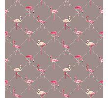 Flamingo Bird Retro Background Photographic Print